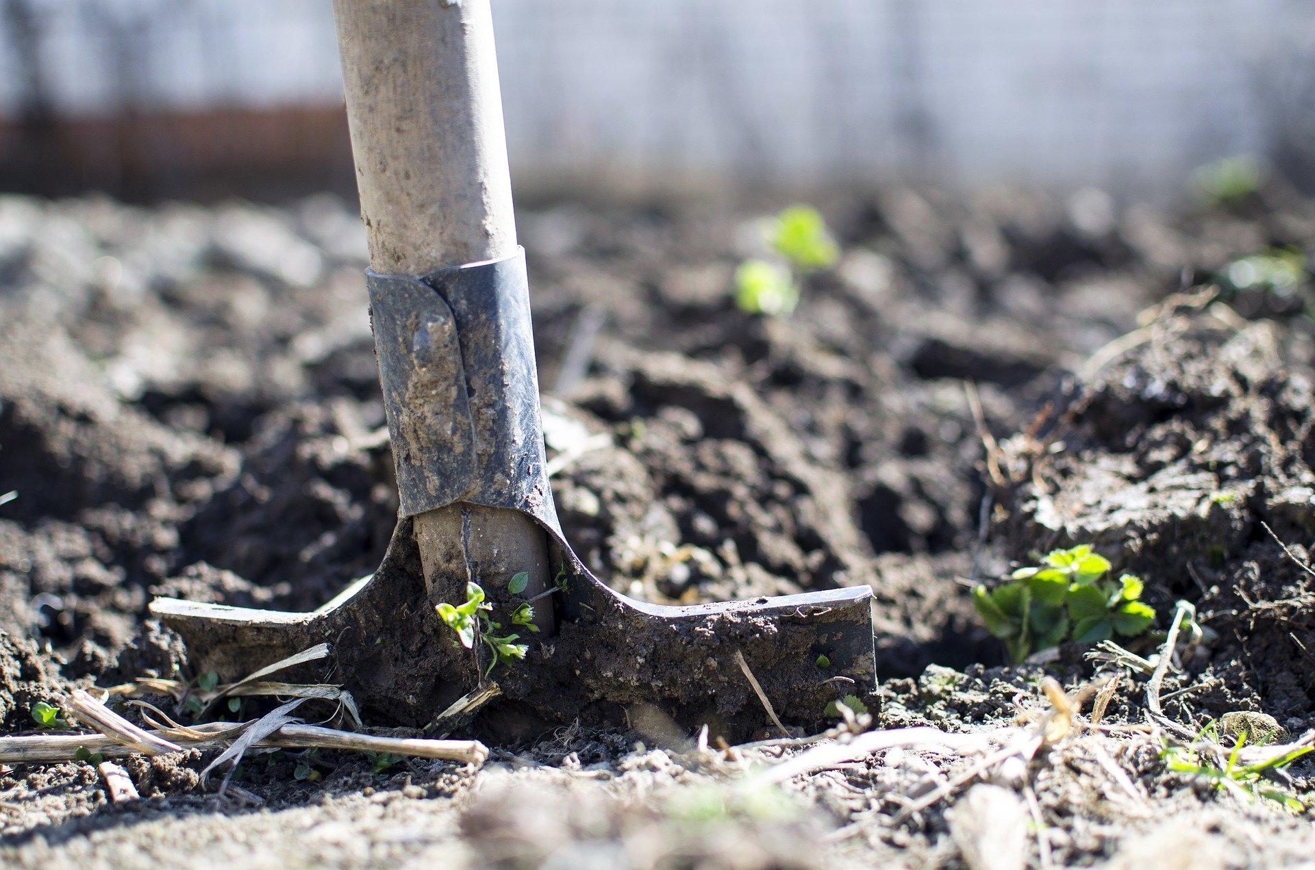 Canicule : Comment s'adapter sur les chantiers?