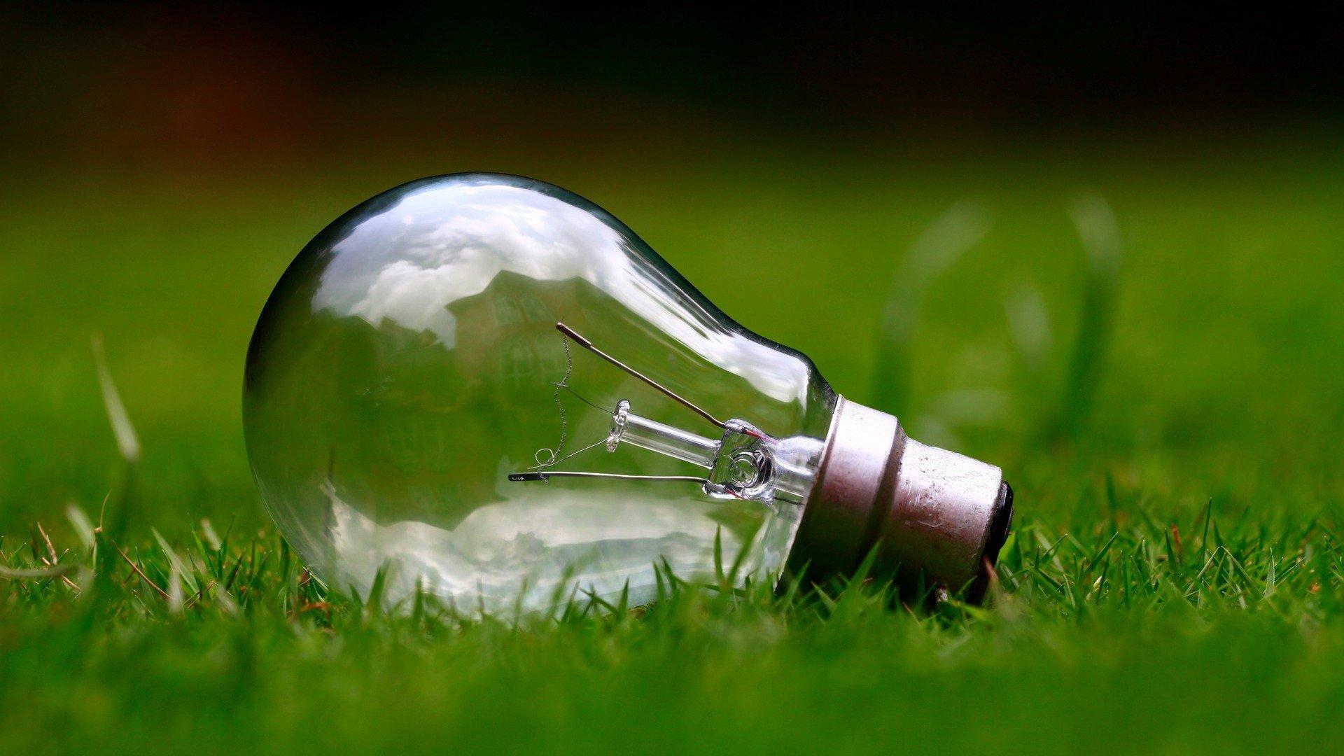 Écologie : Les enjeux environnementaux des chantiers dans le BTP