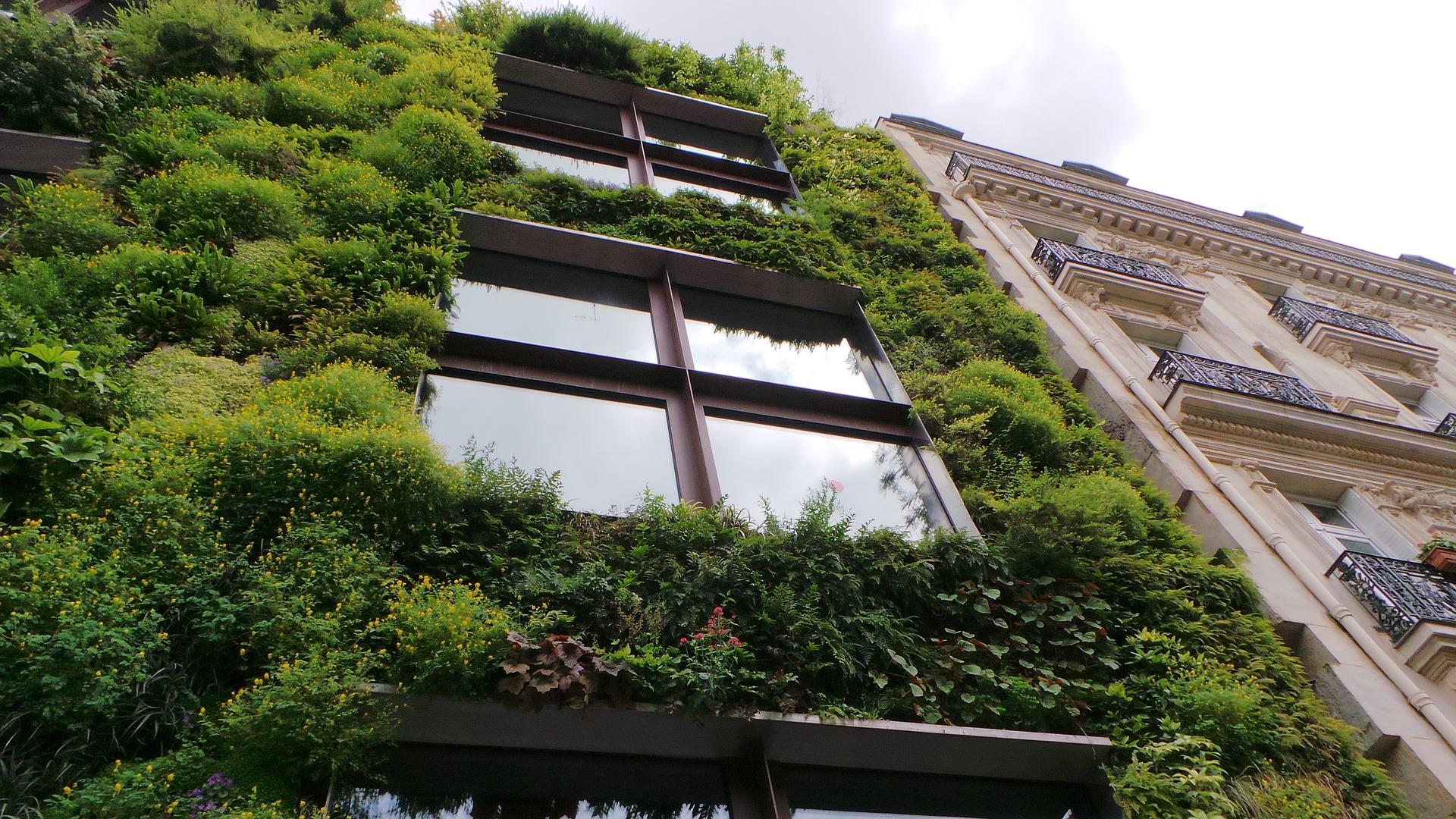 Écologie : Le secteur du BTP face aux enjeux environnementaux